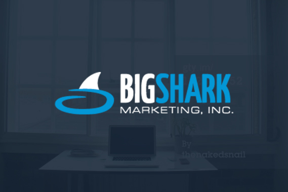 bigshark_about_us2